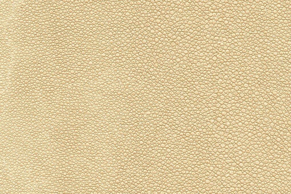 Tiburon Shagreen | Evans & Brown for Koroseal